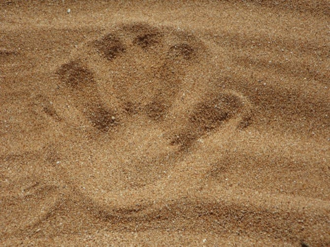 Impronta di cane nella sabbia